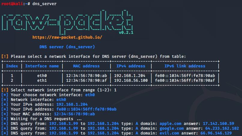 dns_server.py output